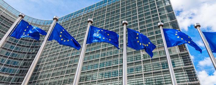 europe_parlement_et_drapeaux_710x280.jpg
