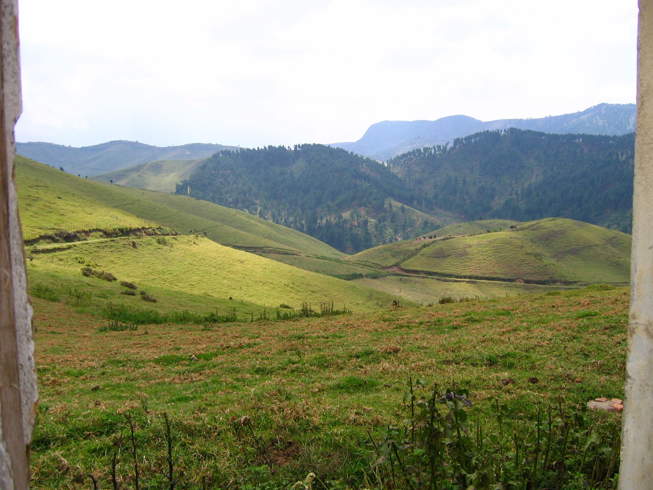 collines_de_gishwati_3-2.jpg