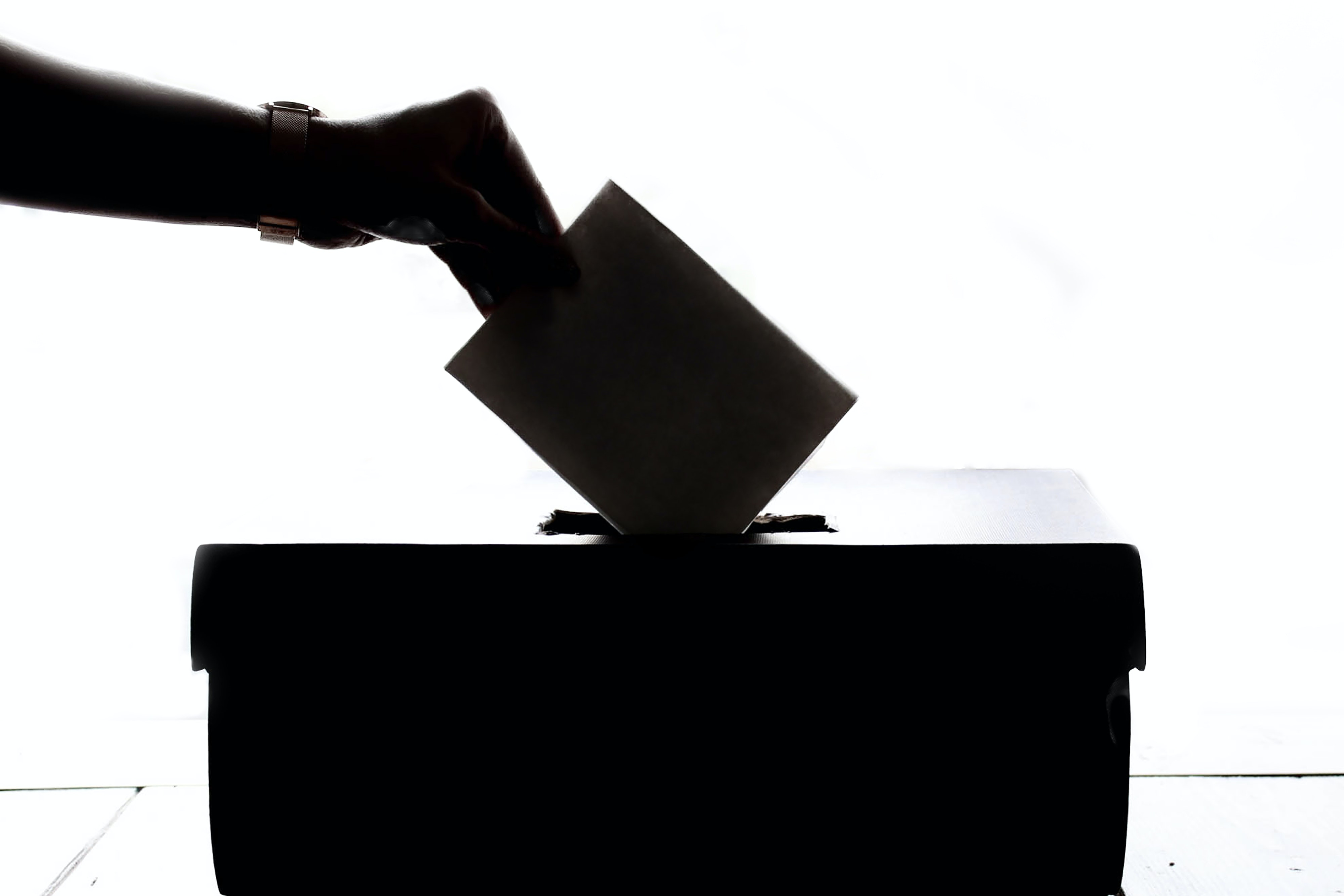 photo_elections_1_pexels.jpg